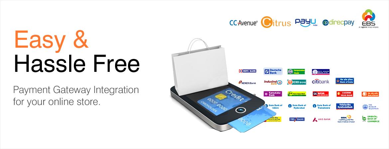 Payment Gateway Integration   Payment Gateway Provider   Online
